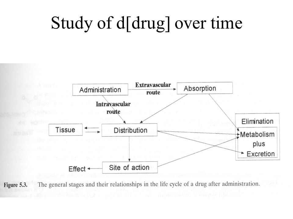 Study of d[drug] over time